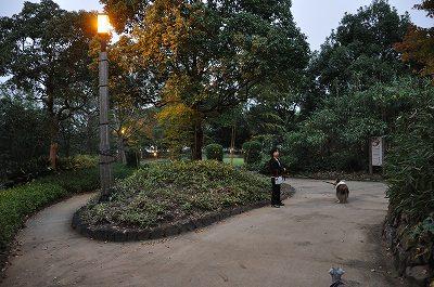 竹公園をぶらり