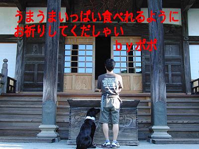 伊豆旅行2-10