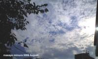 2009805.jpg