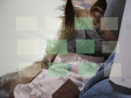 2009.9.3to 092