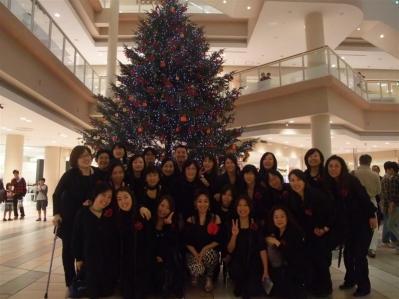 20111204christmas tree