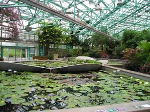 草津市立水生植物園「みずの森」3
