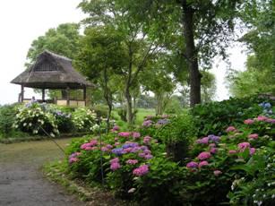 もりやま芦刈園2