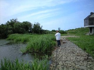 2011-7-3 雷魚 (1)