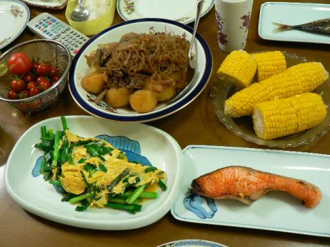 2009年7月21日夕食