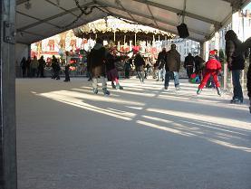 フォンテーヌブローのスケート場