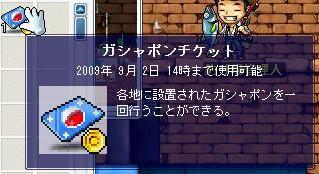 Maple7435a.jpg