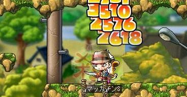 Maple7455a.jpg
