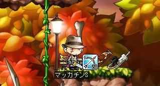 Maple7458a.jpg