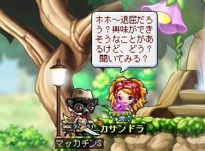 Maple7464a.jpg