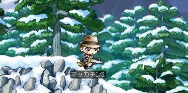 Maple7505a.jpg