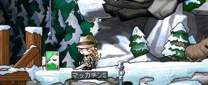 Maple7511a.jpg