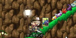Maple7666a.jpg