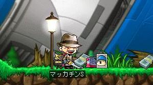 Maple7667a.jpg
