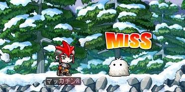 Maple7677a.jpg