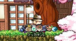 Maple7690a.jpg