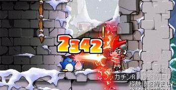 Maple7694a.jpg
