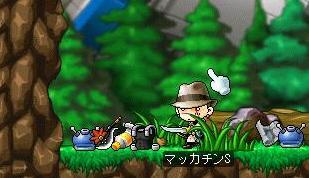 Maple7701a.jpg