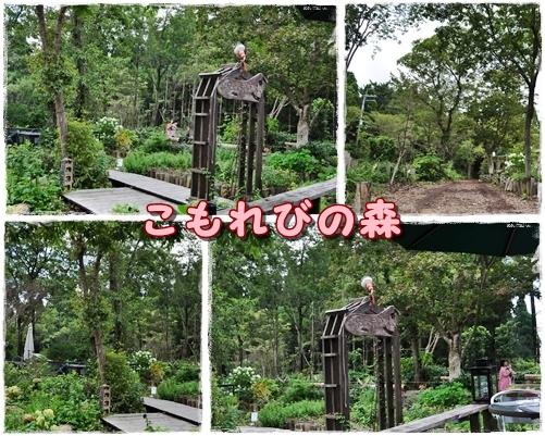 2_20110901211839.jpg