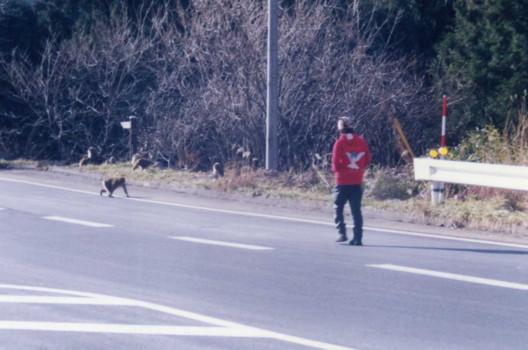 gunma-monkey.jpg