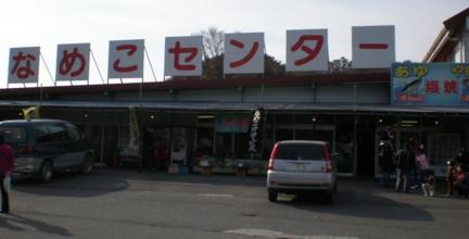 nameko-center1.jpg