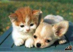 30_letbefriends_28583.jpg