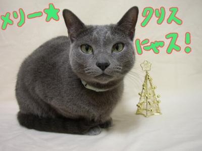 クリスマス2007①
