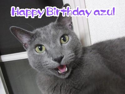 アスル誕生日2011
