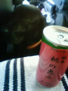 2011 04 30_8150