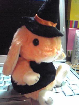 ハロウィンウサギ