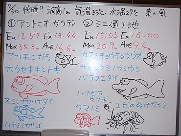 宮古島 ログデータ 2009/7/30