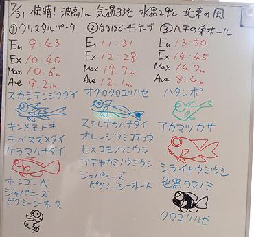 宮古島 ログデータ 2009/7/31
