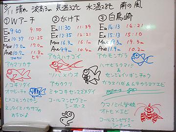 宮古島 ログデータ 2009/8/11