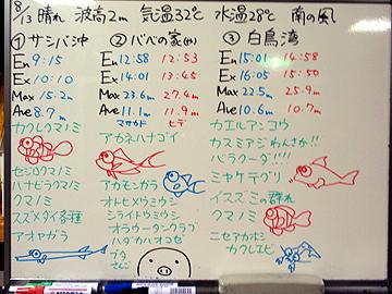宮古島 ログデータ 2009/8/13