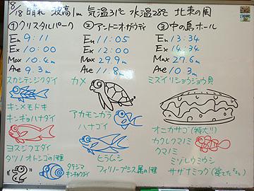 宮古島 ログデータ 2009/8/18