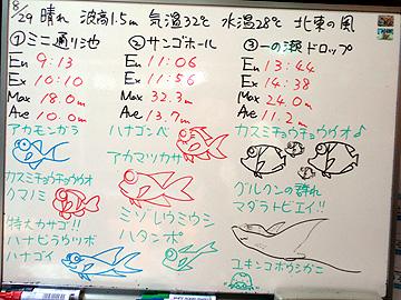 宮古島 ログデータ 2009/8/29