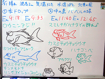 宮古島 ログデータ 2009/8/31