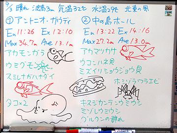宮古島 ログデータ 2009/9/3