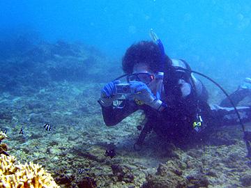 宮古島 イムギャーマリンガーデン 体験ダイビング