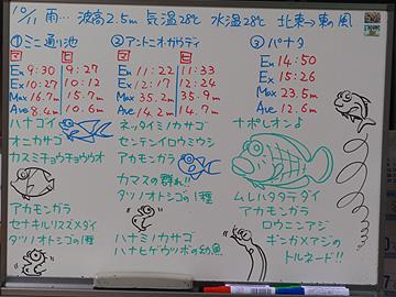 宮古島 ログデータ 2009/10/11