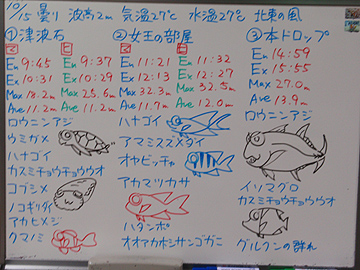 宮古島 ログデータ 2009/10/15