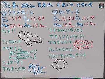宮古島 ログデータ 2009/10/23