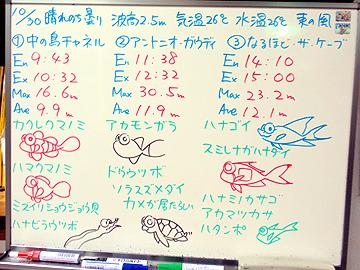 宮古島 ログデータ 2009/10/30