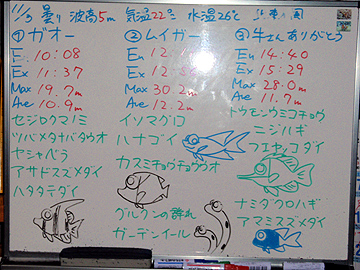 宮古島 ログデータ 2009/11/3