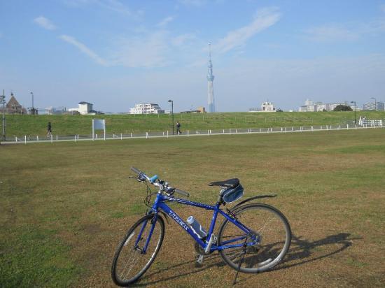 サイクリング10-30 (6)