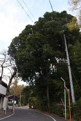 120306-2.jpg