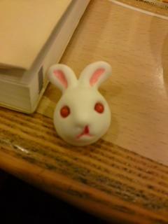 鼻血ウサギ。