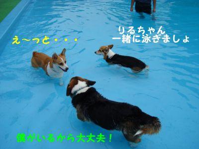 20090810-9_400.jpg