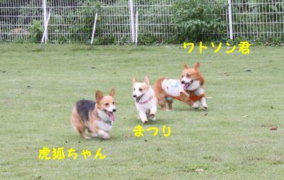 20090830-7.jpg