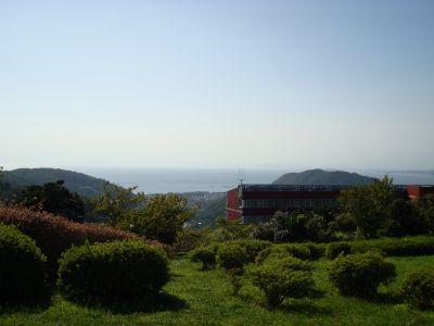 20090912-1.jpg